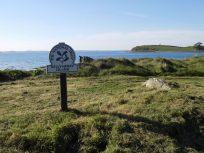 Strangford Lough and Ballyhenry island